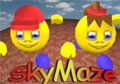 Sky Maze Giveaway
